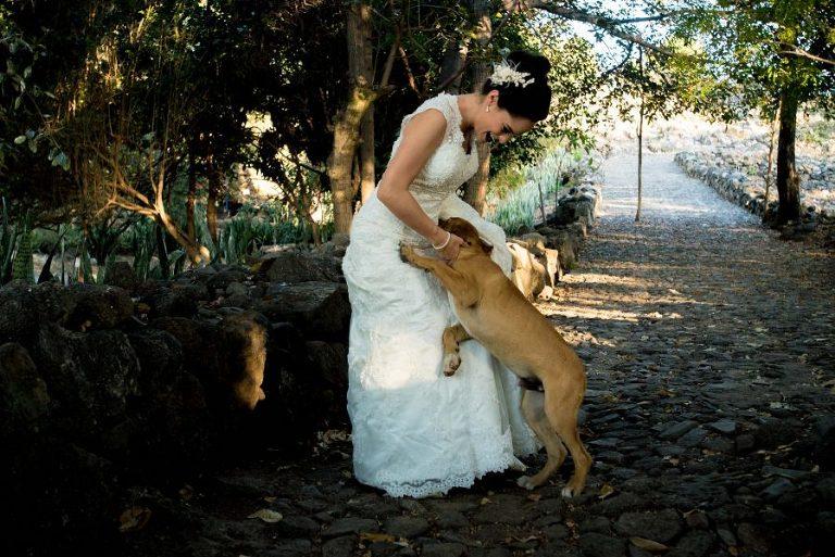 Isla Mezcala Jalisco Trash the dress